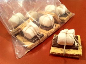 S'more_(smore)_ingredients_wrapped_in_string